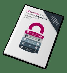 Cyber Crime Plan